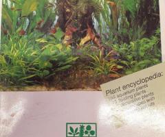 Dennerle växtbok